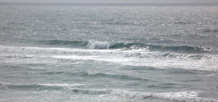 Finding uncrowded waves in July