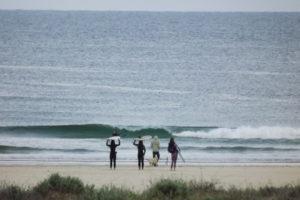 surf school moliets